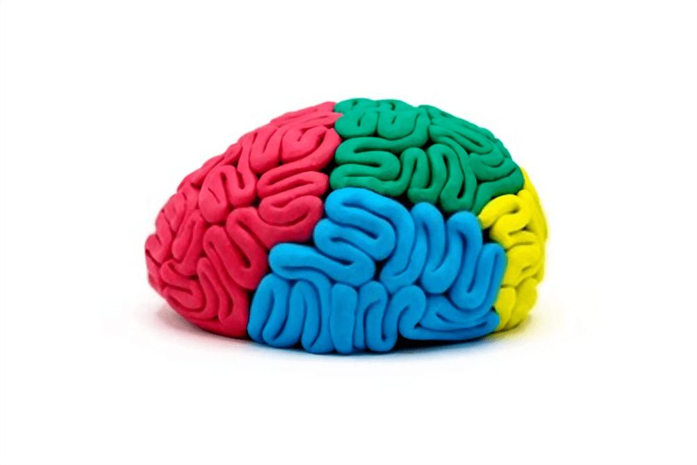 cognitivisme chez l'enfant